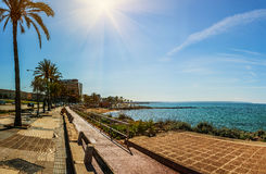 Cycle path in Palma, Mallorca, Balearic in Spain Royalty Free Stock Photo