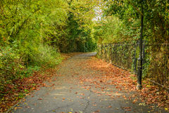 Cycle path through town Royalty Free Stock Image