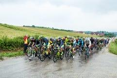 Cycle race Stock Photos