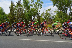 Cycle Race Peleton La Vuelta España. In the middle of the peleton on stage 9 of La Vuelta Espana 2017 Royalty Free Stock Photography