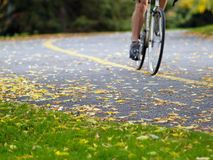 Cycle racing. In the autumn Royalty Free Stock Photos