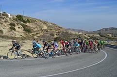 Cycle Racing Stock Photo