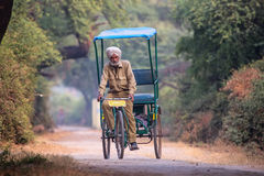 Cycle rickshaw riding in Keoladeo Ghana National Park in Bharatp Stock Images
