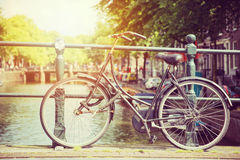 Cycle in sun Royalty Free Stock Photos