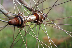 Cycle wheel hub Stock Photography