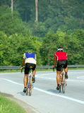 Cycling 3. Two friends cycling in the morning mist Royalty Free Stock Photos