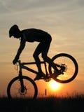 Cycling. Mountain biker stock image