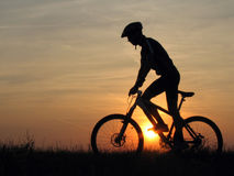 Cycling. Mountain biker stock photos