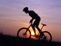 Cycling. Mountain biker silhouette in sunset royalty free stock photo