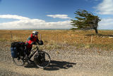 Cycling Against The Wind royalty free stock photography
