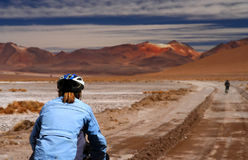Cycling through Altiplano Royalty Free Stock Image