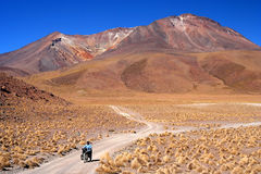 Cycling through Altiplano Stock Photography