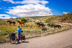 Cycling through argentinian countryside Stock Image
