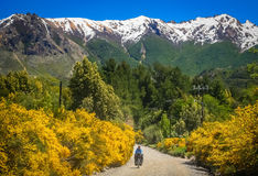 Cycling through the argentinian mountains. Woman cycling on the corrugated road through the mountains in Lake District, Argentina Stock Photography