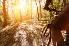 Cycling in an autumn forest. Riding a bike in the woods with sun-flare.