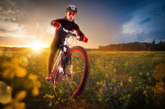 Cycling in the beautiful meadow stock photos