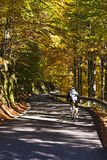 Cycling in a beautiful road. A cyclist while cycling in the middle of an autumnal and beautiful road Royalty Free Stock Photography