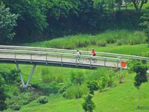 Cycling - Bishan Park Royalty Free Stock Photography