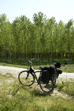 Cycling. Casalmaggiore (Cr), Italy, two becycle along a dirt bike Royalty Free Stock Photos