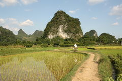 Cycling in China country Stock Photography
