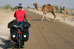 Cycling Through Desert. Cycling through remote desert road in India royalty free stock photography