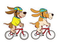 Cycling Dog Mascot Stock Photo