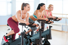 Cycling on exercise bikes. Stock Photo