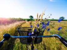 Cycling on a field Royalty Free Stock Photography