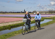 Cycling in the Flower Fields Stock Image