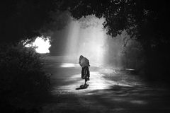 Cycling in fog. A village man on a bicycle in fog on a fine morning stock images