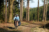 Cycling in the forest stock photos