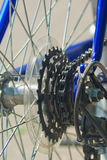 Cycling gears. Bike gear wheel and chain Royalty Free Stock Images