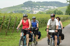 Cycling holiday along vineyards on the river Moselle Royalty Free Stock Image