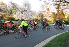 Cycling in the Kenwood Neighborhood