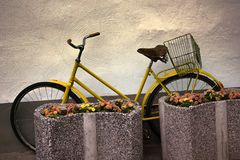 Bicycle for walks. Cycling life Royalty Free Stock Image