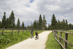Cycling on a mountain road. Cycling in the mountains, on a summer day Royalty Free Stock Images