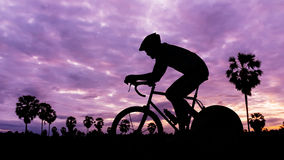 Cycling at park on twilight time. Cycling at Palm tree park on twilight time Stock Images