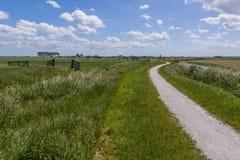 Cycling Path at Aartswoud Royalty Free Stock Photo