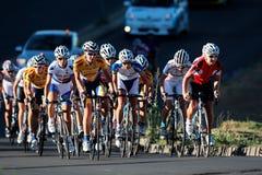 Cycling race Stock Image