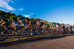 Cycling Race Group Pe-leton  Royalty Free Stock Image
