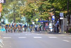 Cycling race final efforts Royalty Free Stock Photo