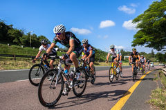 Cycling Road Champs Royalty Free Stock Photography