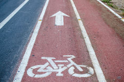 Cycling road signs and markings. Bicycle lane Stock Images