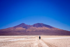 Cycling on the salar Royalty Free Stock Photos