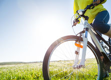 Cycling at summer. A woman cycling outdoors in summer Royalty Free Stock Images