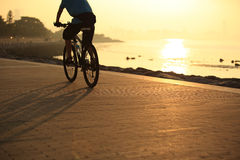 Cycling at sunrise seaside Royalty Free Stock Photography