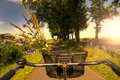 Cycling in sunset Royalty Free Stock Photography