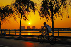 Cycling at sunset Royalty Free Stock Photo