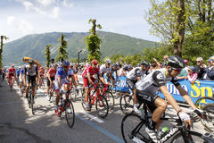 Cycling: 99th Tour of Italy 2016 / Stage 14 Royalty Free Stock Photography