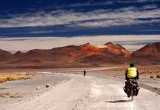 Cycling Through Altiplano Stock Photos